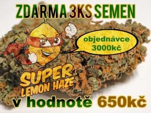 ?ZDARMA? Super Lemon Haze 3ks