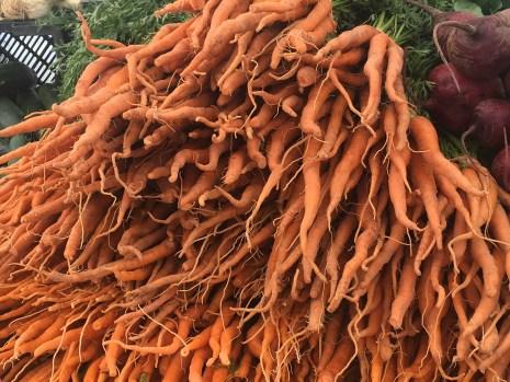 GrowRVA - SOJ Carrots 061816