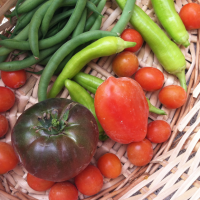 Six Scrumptious Tomato Recipes