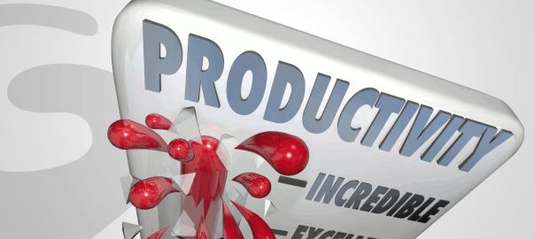 Profit Drain #2 - Under Achieving Productivity