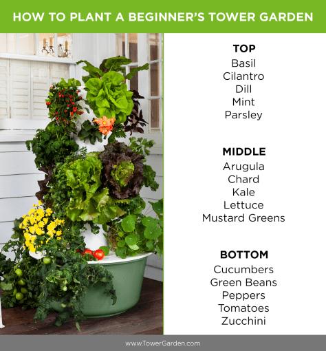 Tower Garden Beginner Plants