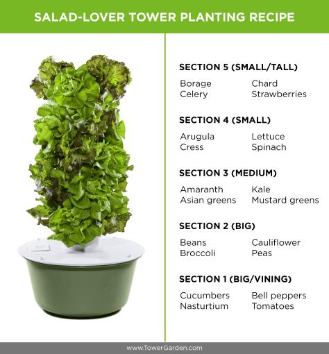 Salad Tower Garden Tower Planting Schematic