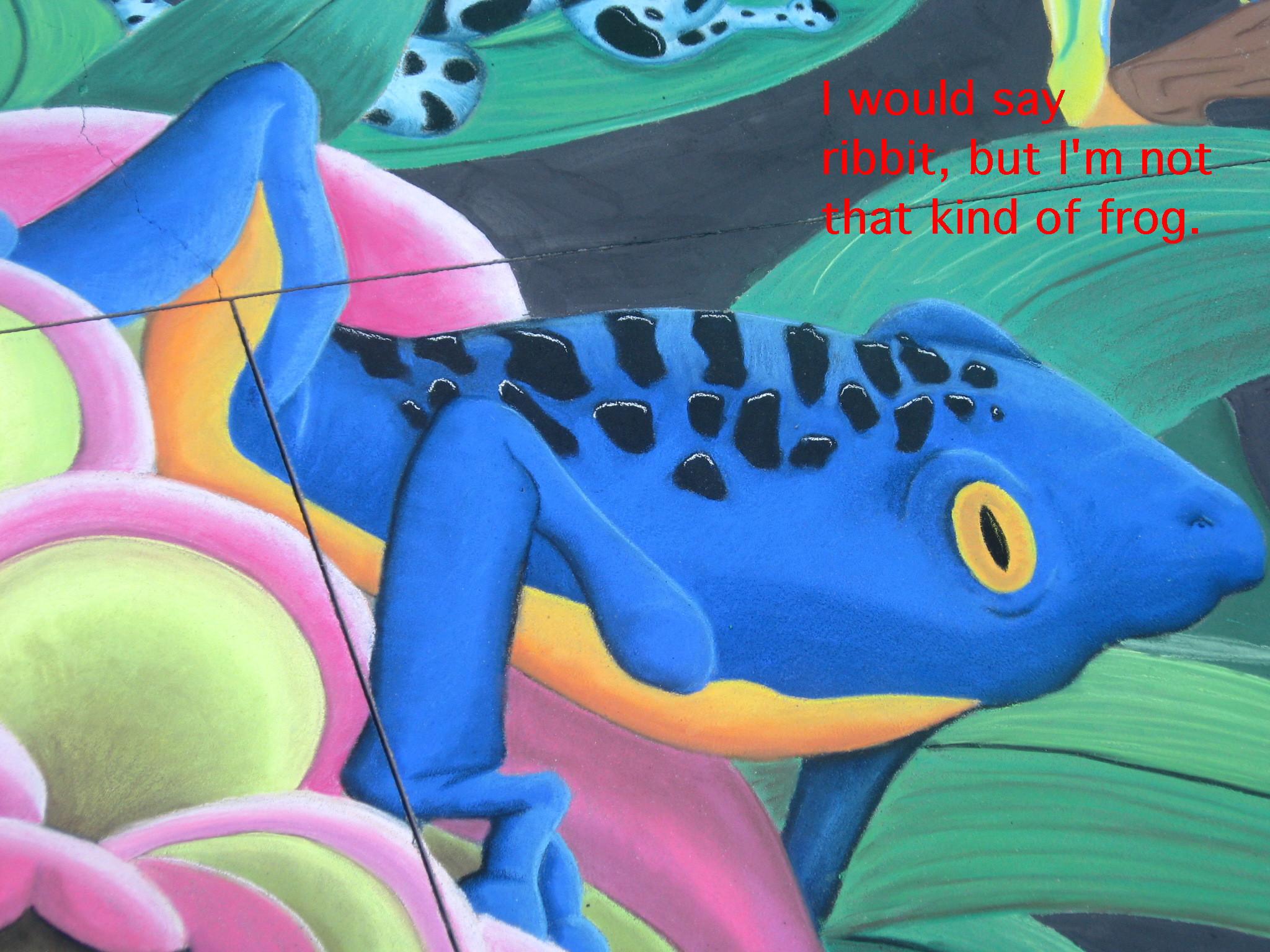 CF Frog
