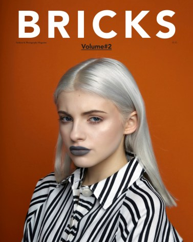 bricks-vol-2