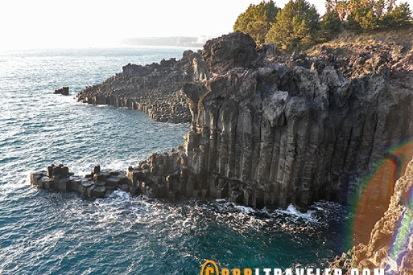 Jusangjeolli Cliffs at Jeju, jeju island sightseeing map, what to do in jeju island, what to see in jeju