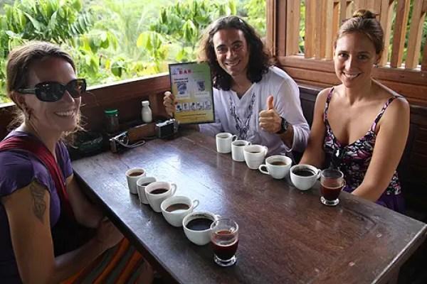 bali coffee samples