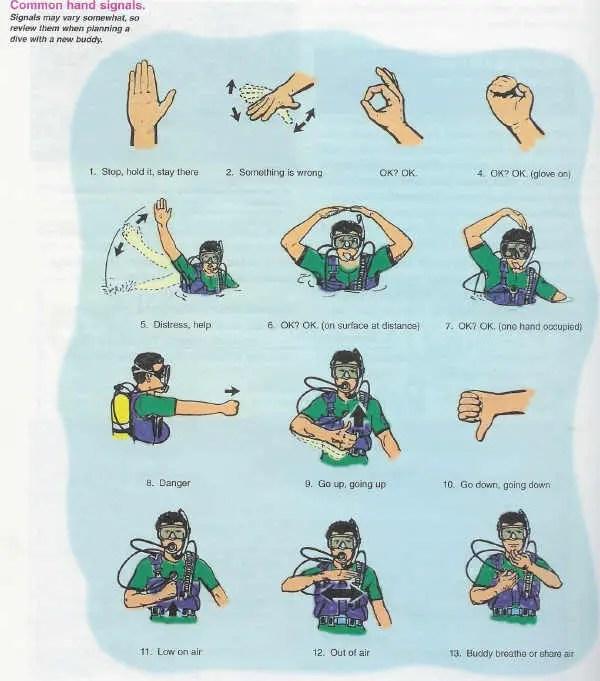 dive hand signals