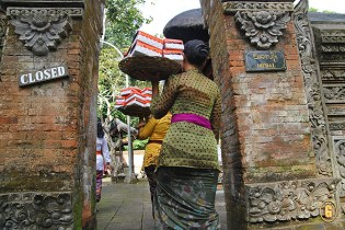 Balinese ceremony at the Monkey Forest Temple