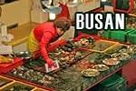 travel busan, busan tourism, what to do in busan, what to see in busan, busan in 48 hours, busan itinerary,