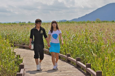suncheon bay ecological park, suncheon tourism, travel suncheon, travel korea,