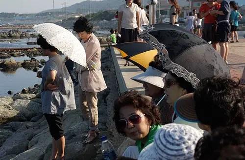 asian parasols in Korea