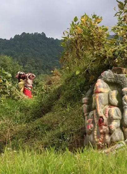 Nepalese farming gods Ganesh