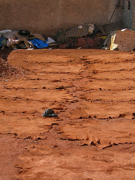 tannery hides morocco