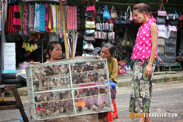 caged birds set free myanmar, buddhist practice set free birds, bird sellers in southeast asia