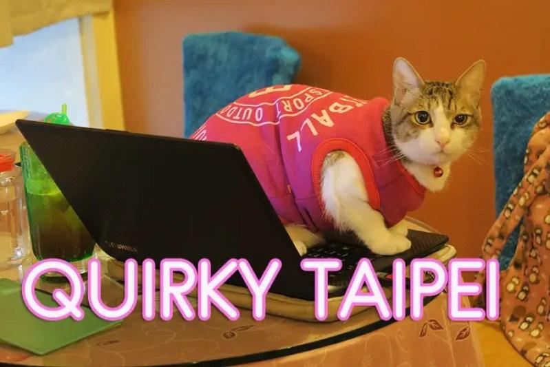Unusual Things to Do Taipei, best things to do taipei, taipei travel guide, taipei top attractions, top attractions taipei, cat cafes taipei, cafe and cats 1988