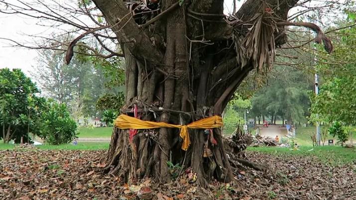 nai harn buddhist Monastery, famous temples phuket, Phuket Travel Guide, things to do in phuket, things to