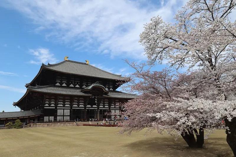 todaiji nara temple