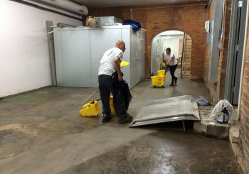 Steel City Ice Cream – Stripping Sealing and Waxing Concrete Floors 24 2494f76f268e56a09b58ce52aac69f87 350x245 100 crop Stripping, Sealing and Waxing Concrete Floors at Steel City Ice Cream in Dallas