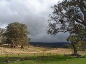 Drive into Barrington Tops