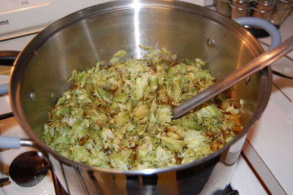 Hops added to the wort