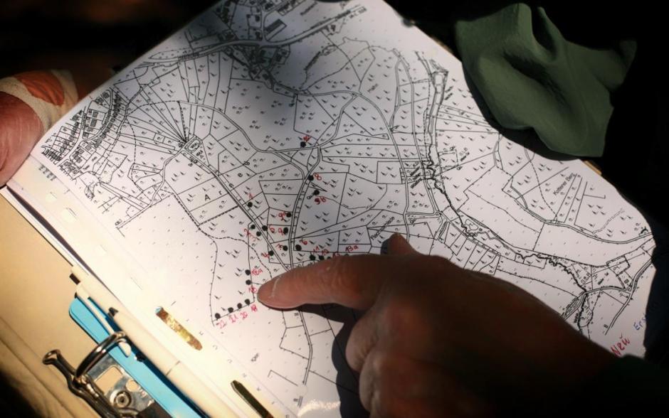 Karte mit Standorten der Ameisennester