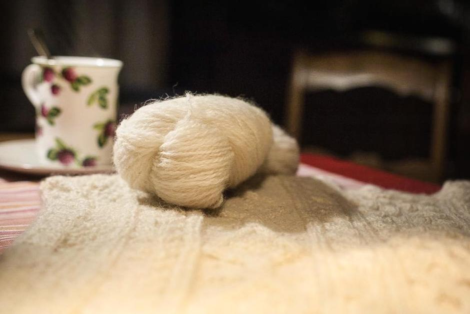 """""""Bentheimer Landschaf"""": Die Wolle sieht weich aus, fühlt sich aber fest an. © 2016 Foto: Stefanie Schildchen"""
