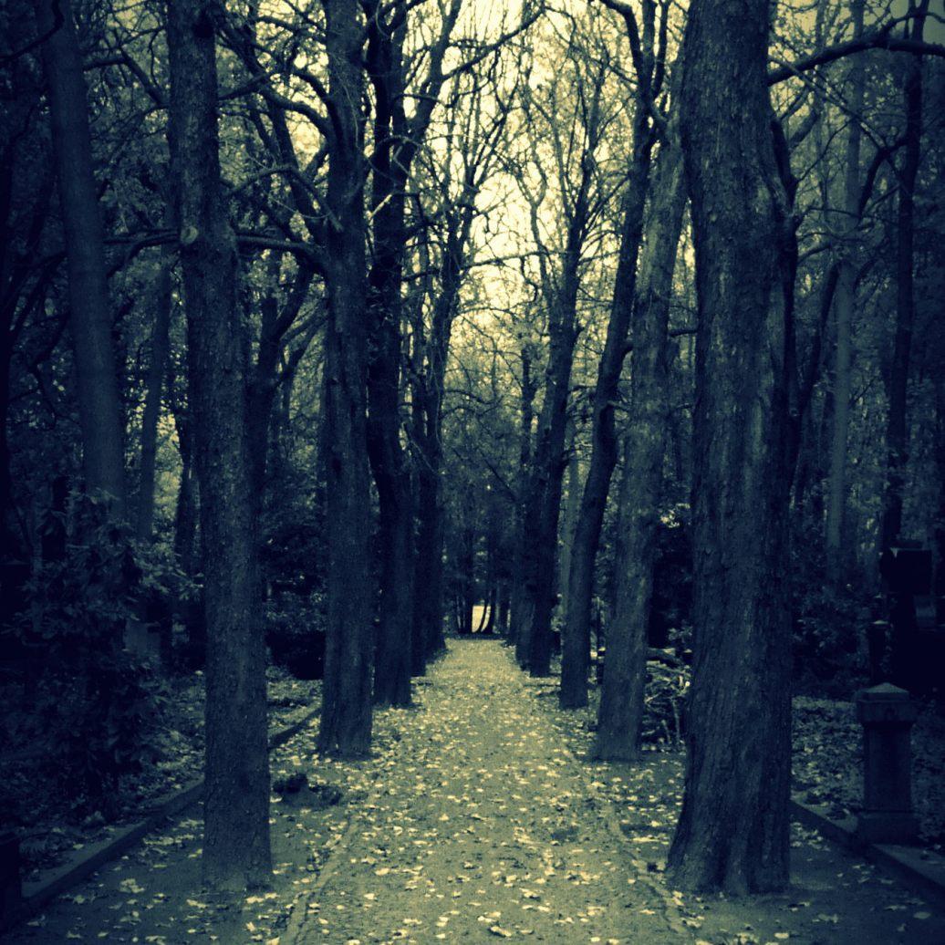 Einsamer Weg ins Ungewisse