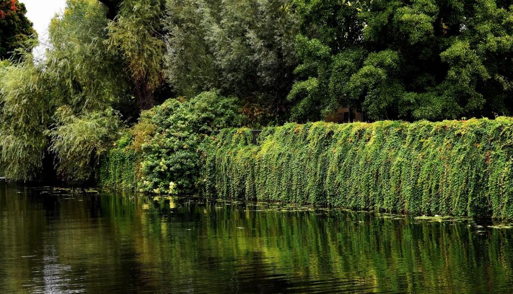 Grünes Ufer orton