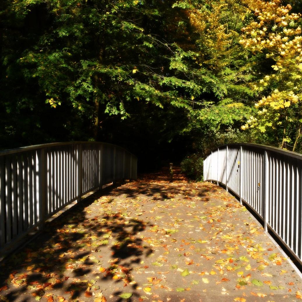 ber die Brücke
