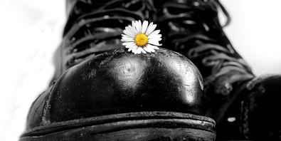 Springerstiefel mit Gänseblümchen