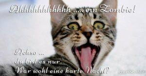 Guten Abend Und Gute Nacht Spruche Bilder Und Spruche Fur Whatsapp Und Facebook Kostenlos