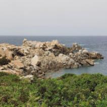 Le dauphin de Granit