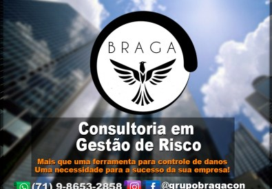 Braga Consultoria e ...