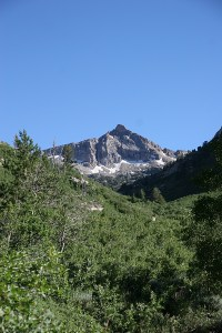 Snow Lake Peak, 11,142'