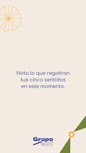 Fondo1 (36)