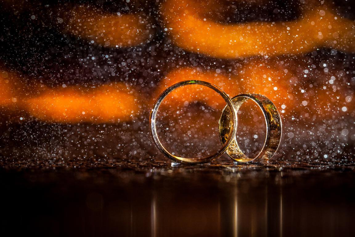 E viveram felizes para sempre…:  A história do Casamento