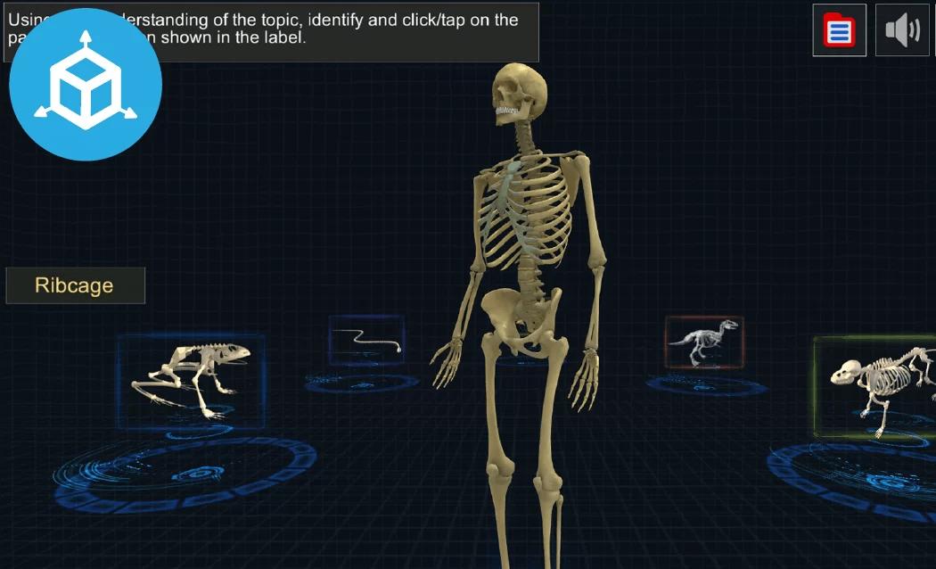 Recrea los temas con espacios de simulación 3D