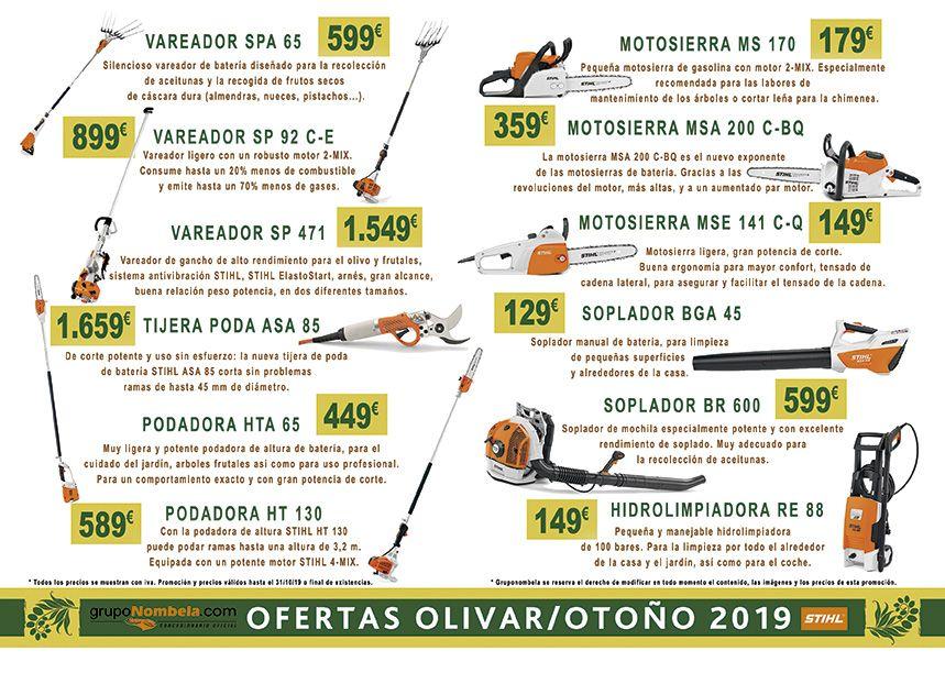 Olivar/Otoño 2019