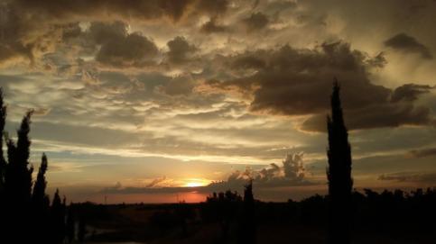 Una puesta de sol bajo un cielo nublado entre unos cipreses.