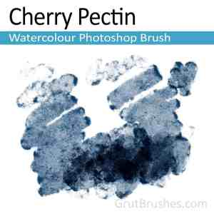 Cherry Pectin Photoshop watercolor brush for digital painters