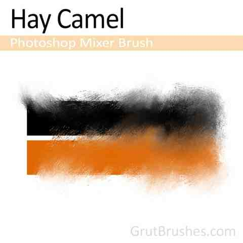 Hay-Camel-Photoshop-Mixer-Brush
