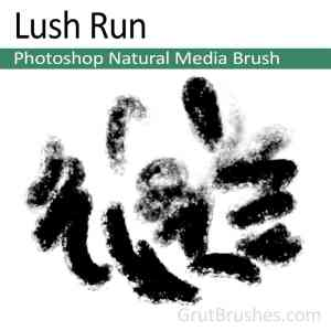 Photoshop Natural Media Brush for digital artists 'Lush Run'
