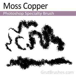 Photoshop Specialty brush 'Moss Copper'