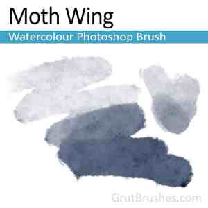Pressure sensitive digital Photoshop watercolour brush for digital artists