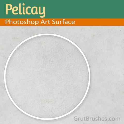 Seamless Paper Texture Pelicay
