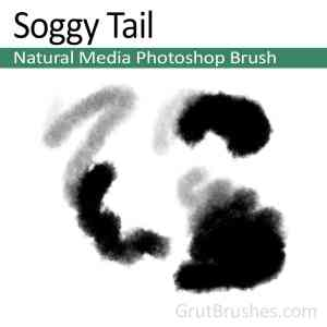 'Soggy Tail' Photoshop Natural Media Brush for digital artists