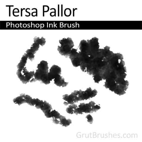 Photoshop Ink Brush for digital artists 'Tersa Pallor'