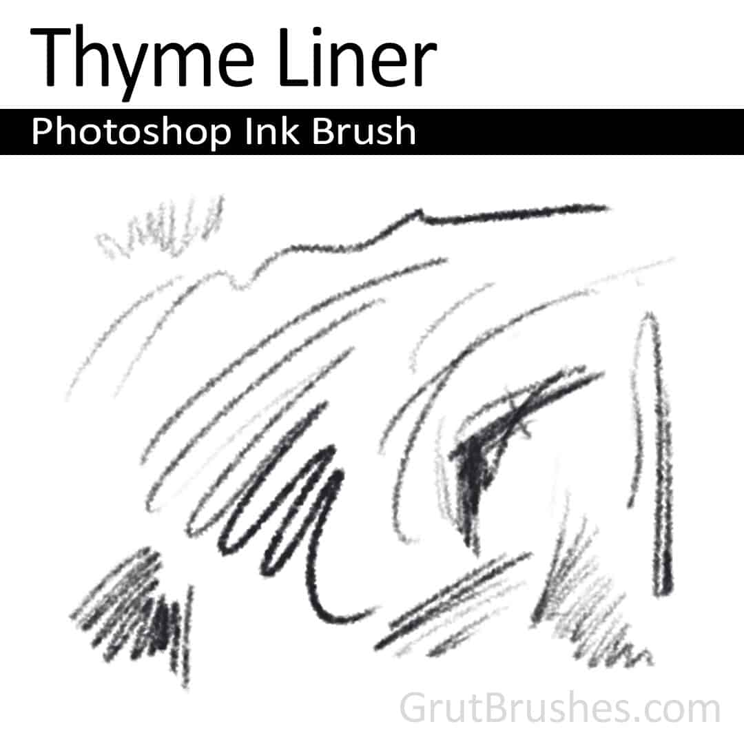 Thyme Liner