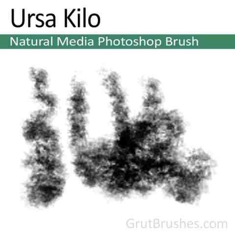 Painting with the Photoshop Natural Media Brush toolset 'Ursa Kilo'