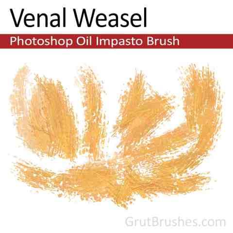 'Venal Weasel' Impasto Oil Photoshop Brush for digital artists